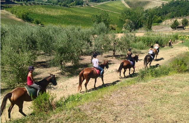 Horseriding Tour in Tuscany