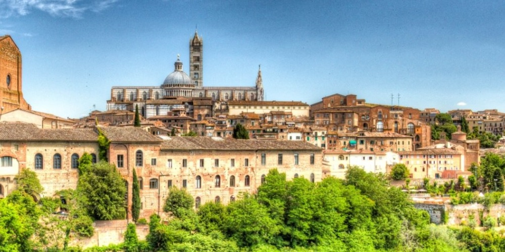 Tour of Siena, lunch and visit to a winery in the Chianti region